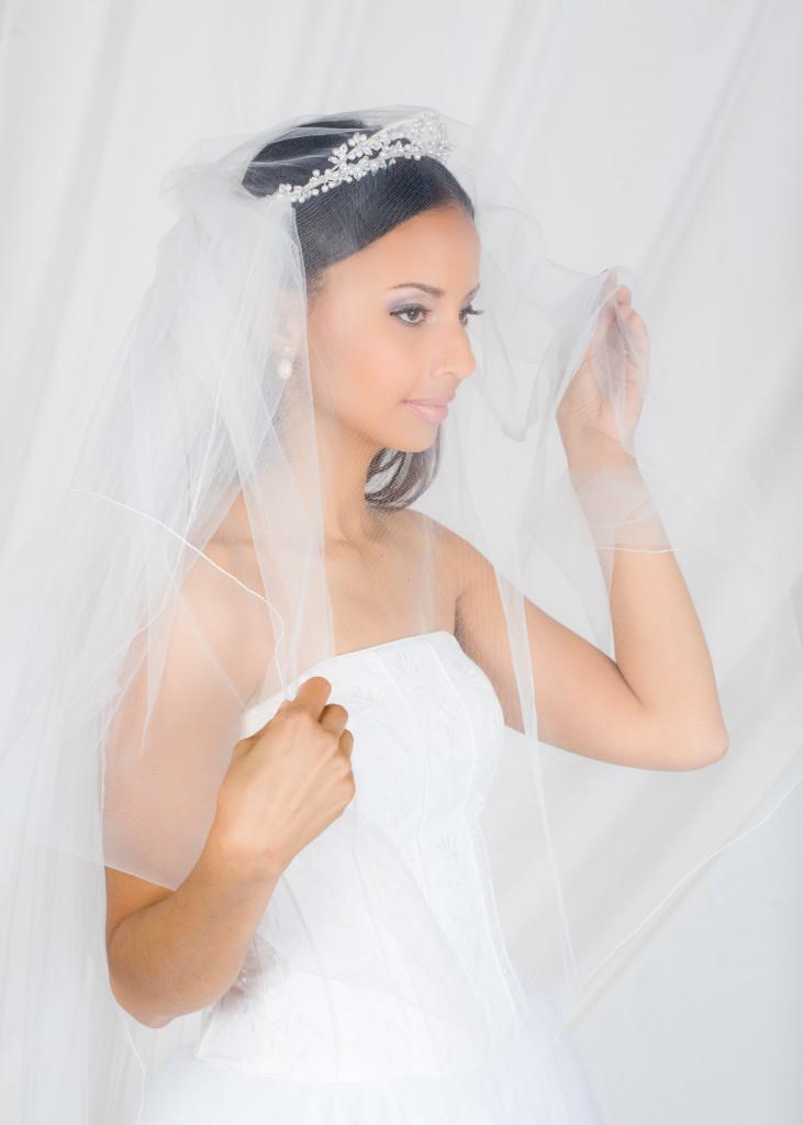 Darrell & Maya Wedding - Studio portrait - Ann Arbor MI