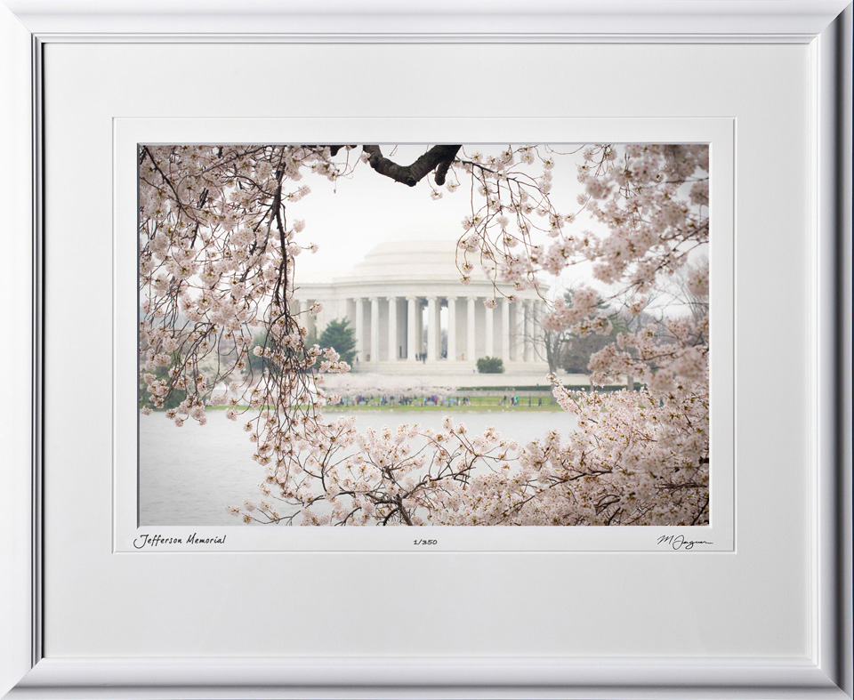 S090402B Jefferson Memorial - Washington DC Cherry Blossom Festival - shown as 10x14