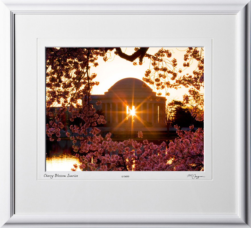 S090403C Cherry Blossom Sunrise - Washington DC - shown as 12x16