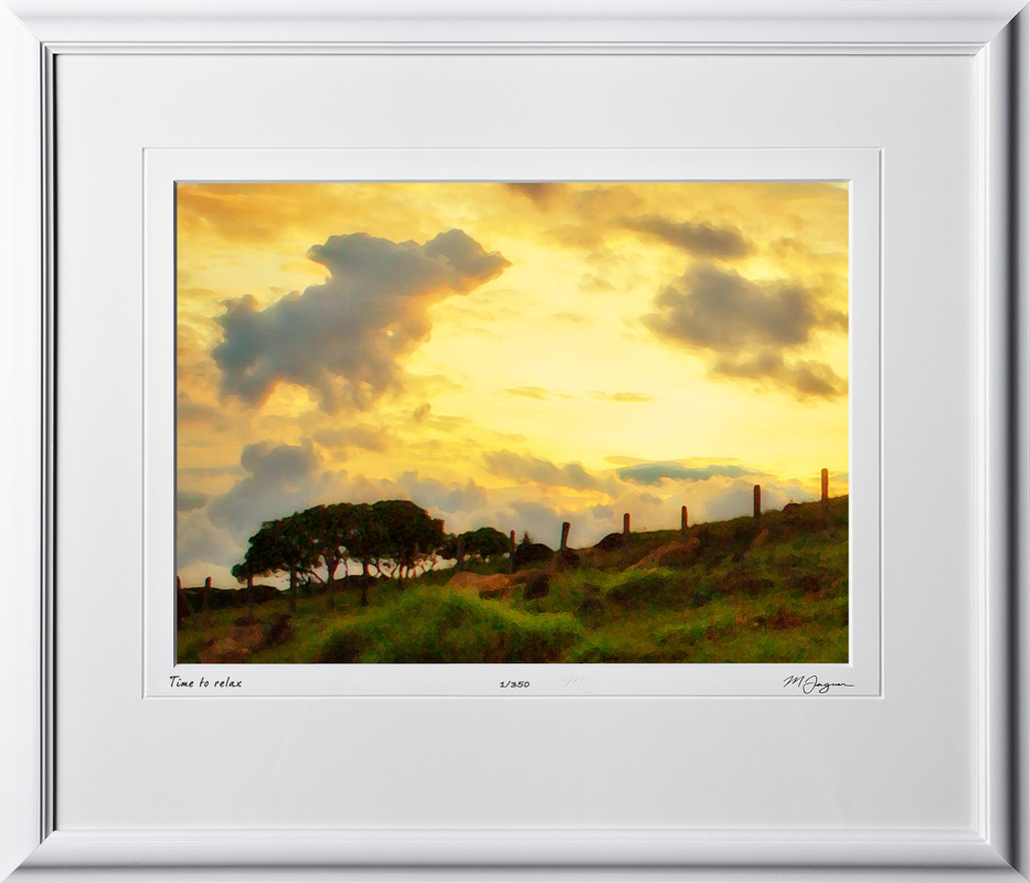 18 S120706 A88 Costa Rica watercolor 10x14 Landscape in 17x20 frame
