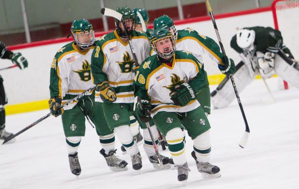 Huron Hockey VS Allen Park, 12-19-12