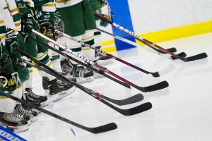 Huron hockey VS Bedford HS Ann Arbor Ice Cube MI Photography
