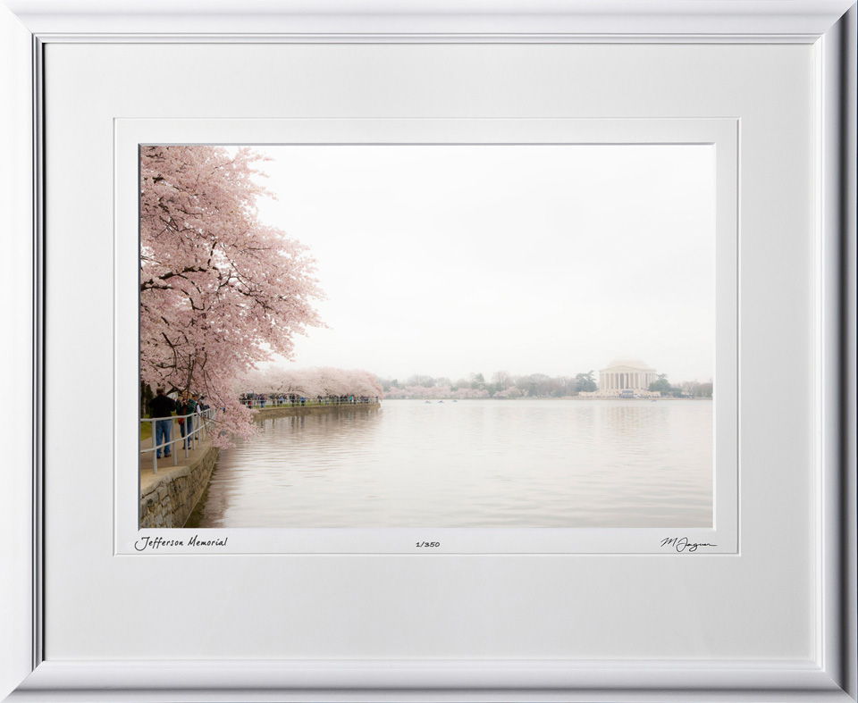 S090402C Jefferson Memorial - Washington DC Cherry Blossom Festival - shown as 10x14