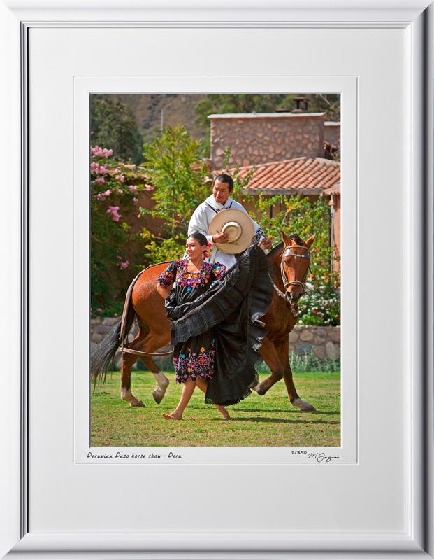 P110516 037 Peruvian Paso horse show - shown as 10x14