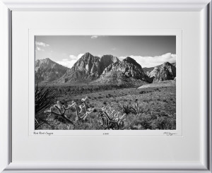 S081004E Red Rock Canyon Nevada - shown as 12x18BW