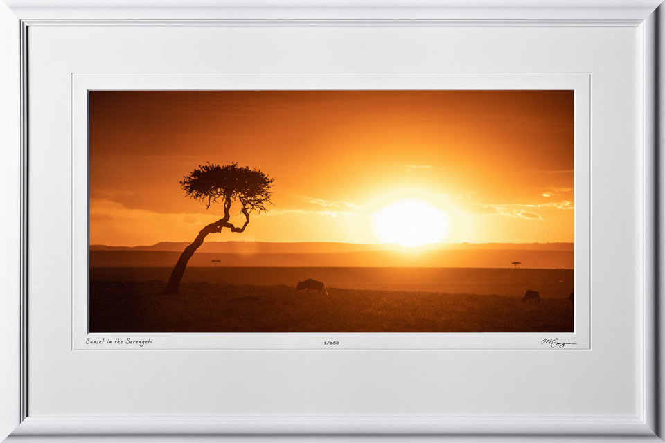 22 W190825B Sunset in the Serengeti - Africa Fine Art Photo - 9x16 print in 15x23 frame