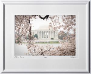 S090402B Jefferson Memorial - Washington DC Cherry Blossom Festival - shown as 10x14