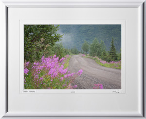 S090716A Denali Road Fire Weed - Alaska - shown as 12x18