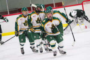 Huron Hockey VS Allen Park sport photography