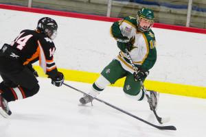 Huron Hockey VS Dearborn sport photography