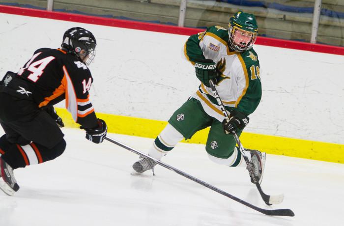 Huron Hockey VS Dearborn, 1-30-13