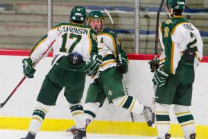 2014-01-18 A306 Huron Hockey VS Pioneer , Ann Arbor, Ice cube, sport photography