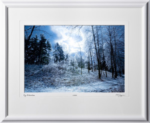 S070117B Icy Arboretum - University of Michigan - shown as 12x18