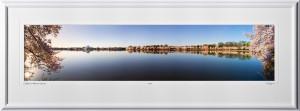 S090405P Jefferson Memorial Cherry Blossom Festival Sunrise - shown as 10x45