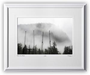 S090723A Elfin Cove mist - Alaska - shown as 12x18