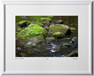 S090721A Ideal Cove Stream - Alaska - shown as 12x18