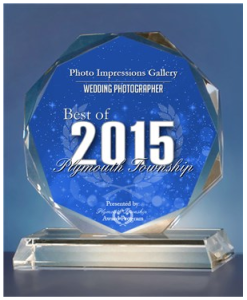 Best of Plymouth MI 2015 award
