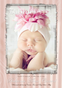 birth announcements cards and magnets Ann Arbor Plymouth MI portrait studio