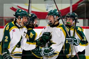 Huron Hockey VS Skyline Ann Arbor Ice Cube Sport Photography